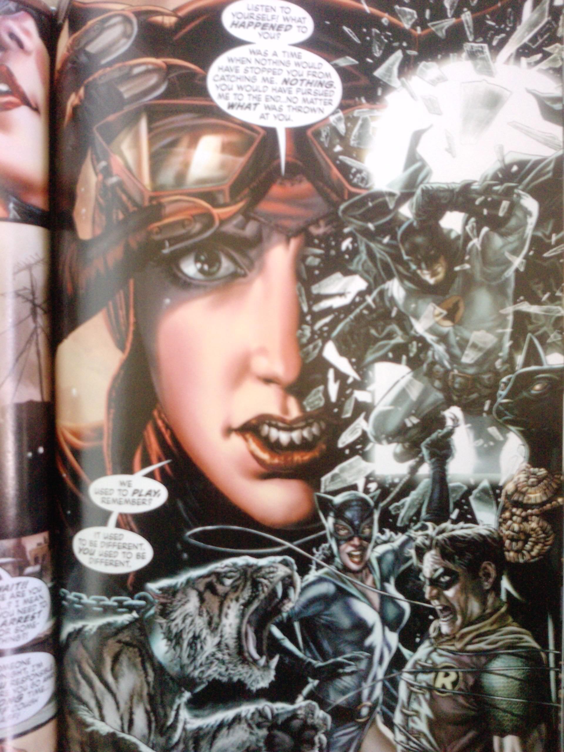 batman graphic novel Batman: arkham asylum - a serious house on  batman: the official comic  adaptation of the warner bros.